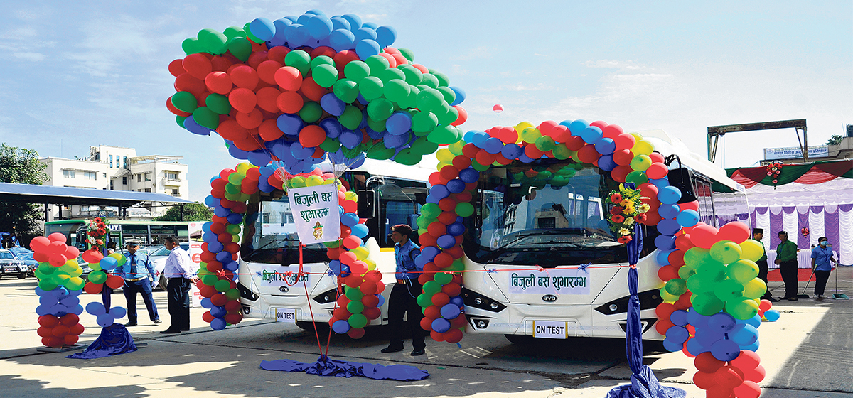 Import of electric vehicles shrinks 88 percent